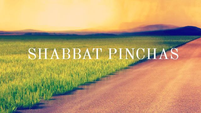 Image result for pinchas torah portion copyright free images