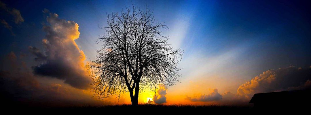 Declaring God's Works